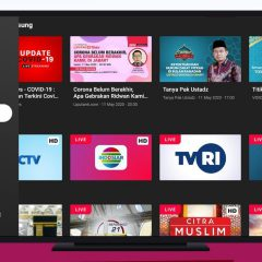 Vidio TV – Nonton Video, TV & Live Streaming (Versi Smart TV / STB)